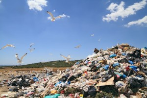 municipal garbage waste dumping site