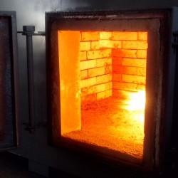 50 kg/hour incinirator usa, animal incinerator 50kg
